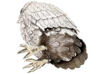 German Sterling Silver Table Owl - Antique c.1910 (11 of 12)
