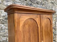 Antique Victorian Pine Shelved Larder Cupboard (7 of 19)