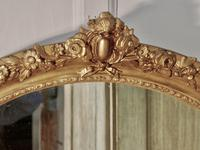 Large French Rococo Oval Gilt Wall Mirror (7 of 9)