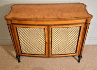 George III Satinwood Chiffonier Side Cabinet (8 of 9)
