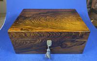 Georgian Brazilian Rosewood Box (13 of 17)
