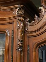 Wonderful French Walnut Bookcase or Cabinet (9 of 25)