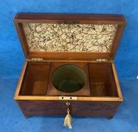 George III Mahogany Twin Canister Tea Caddy (16 of 17)