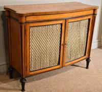 George III Satinwood Chiffonier Side Cabinet (9 of 9)