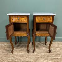 Pair of Hungarian Ash Antique Bedside Cabinets (2 of 6)