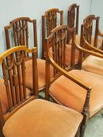 Set of 8 Hepplewhite Style Dining Chairs (9 of 11)