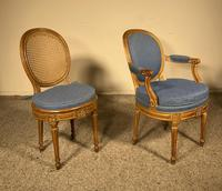Set Of 12 Chairs And Two Armchairs Louis XVI 18th Century (8 of 11)