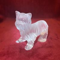Lalique Sculpture of a Yorkshire Terrier Modelled in clear & frosted glass (3 of 5)