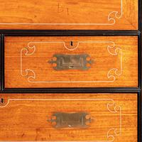 Anglo-Chinese Camphor & Ebony Campaign Secretaire Bookcase (2 of 15)