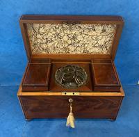 George III Mahogany Twin Canister Tea Caddy (13 of 17)