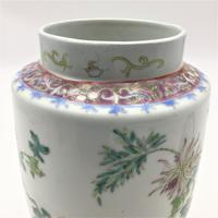 Chinese Famille Rose Jar & Cover - Hongxian (5 of 7)