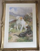 Basil Bradley Watercolour 'English, Irish & Scottish Setters on the alert' (3 of 3)