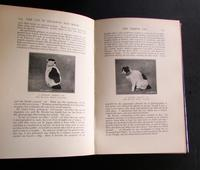 The Cat  in the Mysteries of Religion & Magic by M. Oldfield Howey.  1930, 1st Edition (3 of 5)
