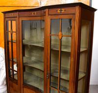 Edwardian Glazed Bookcase Inlaid Mahogany (6 of 9)
