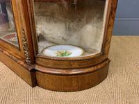 Victorian Burr Walnut Glazed Side Cabinet (15 of 15)