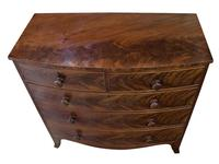 Early 19th Century Flame Mahogany Bow Chest (4 of 7)