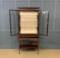 Inlaid Mahogany Display Cabinet by Shapland and Petter (19 of 21)