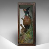 Antique Taxidermy Scene, Birds, Pheasant, Blackbird, Display Case, Victorian (3 of 10)