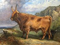 Victorian Scottish Highland Painting of Cattle by Aster Richard Chilton Corbould (14 of 40)
