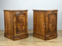 Fine Pair of Victorian Burr Walnut Bedside Cabinets (2 of 8)