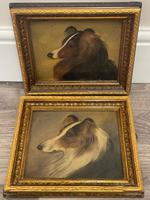 Pair of Scottish 19th Century Oil Paintings Rough Collie Dog Portraits After George Washington Brownlow (5 of 49)