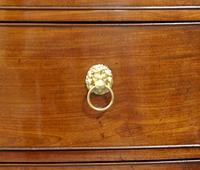 Small Regency Bow-fronted Chest of Drawers (6 of 6)