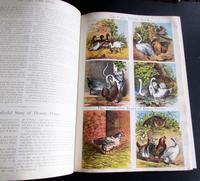 1880 The Prince of Nursery Playmates 1st Edition (6 of 8)