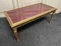 French Gilt Bijouterie Cabinet Coffee Table (5 of 15)