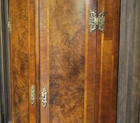 Antique Burr Walnut Corner Cupboard (6 of 9)