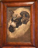 Sheep Portrait Oil Painting by H.Windred (4 of 7)