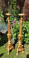 Handsome Pair of 18th Century Giltwood Alter Sticks (2 of 4)