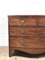 Georgian Mahogany Bow Front Chest of Drawers (4 of 10)