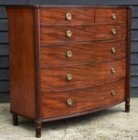 Superb Quality Regency Mahogany Bow Fronted Chest of Drawers (8 of 14)