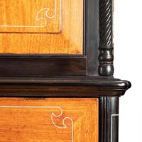 Anglo-Chinese Camphor & Ebony Campaign Secretaire Bookcase (4 of 15)