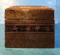 Victorian Burr Holly Glove Box with Tunbridge Ware Inlay (9 of 9)