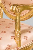 Pair of Italian 19th Century Elbow Chairs (3 of 10)