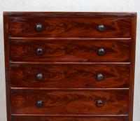 Cuban Mahogany Chest of Drawers 19th Century Tallboy (7 of 12)