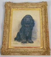 Marion Harvey 1886-1971 Portrait of a Black Spaniel (8 of 9)