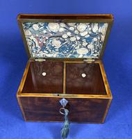 18th Century Mahogany Twin Tea Caddy with Shell Inlay (12 of 17)