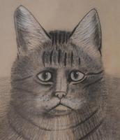 Superb Victorian 'grumpy Cat' Pastel Drawing (8 of 10)