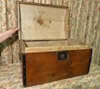 Petite Pine Travelling Trunk with Domed Top (4 of 5)