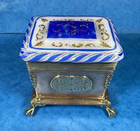 Arts & Crafts Glass and Brass Single Tea Caddy. (13 of 18)