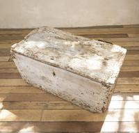 19th Century Rustic Painted Country House Trunk - Coffee Table (9 of 16)