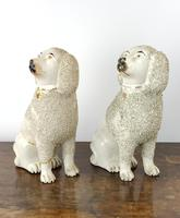 Two Decorative 19th Century Staffordshire Poodles (7 of 9)
