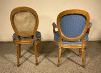 Set Of 12 Chairs And Two Armchairs Louis XVI 18th Century (5 of 11)