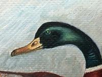 Fine 20th Century English Oil Painting Mallard Bird Duck Rising Up W.S Pickering (14 of 16)