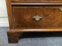 Lovely Antique Burr Walnut Chest of Drawers (11 of 14)