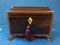 Regency Black Walnut Sarcophagus Twin Section Tea Caddy (3 of 11)