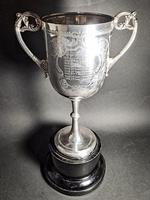 Victorian Silver Trophy (5 of 6)