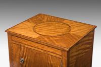 19th Century Satinwood Cupboard (3 of 5)